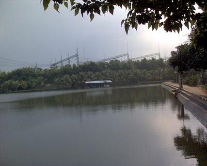 Situ Pulo Pancoranemas Depok Expose